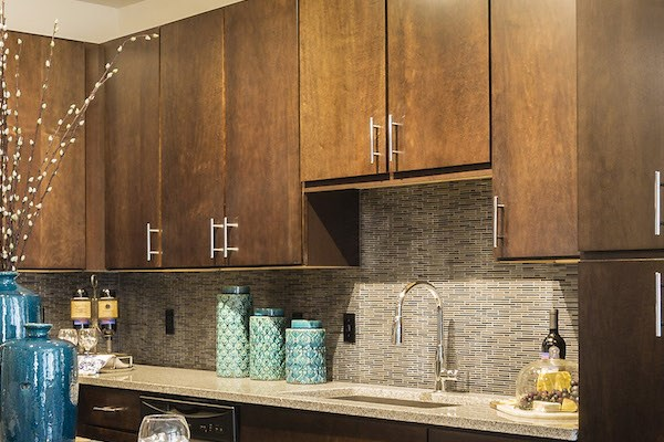 stylish cabinetry in gourmet kitchen