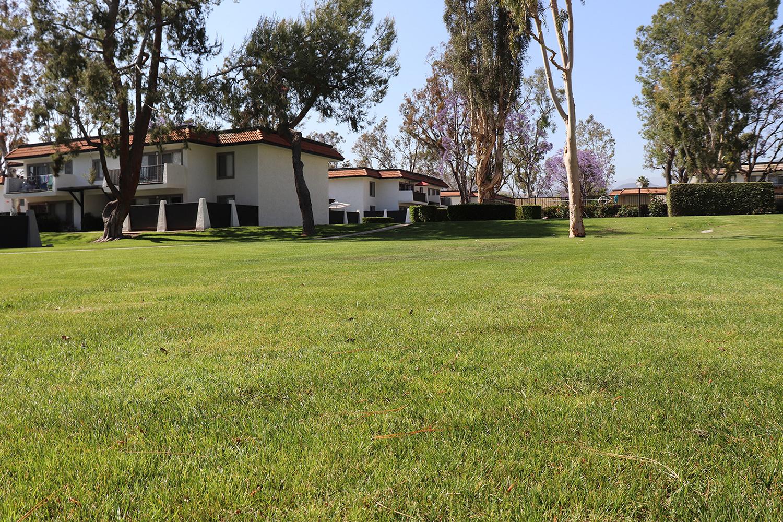 Landscaped Lawn at Monte Vista Apartment Homes, La Verne, 91750