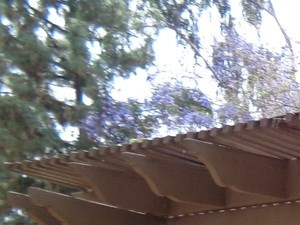 BBQ in Monte Vista Apartments | Apartments in La Verne, CA