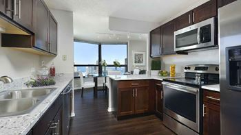 175 N Harbor Drive Studio-3 Beds Apartment for Rent Photo Gallery 1