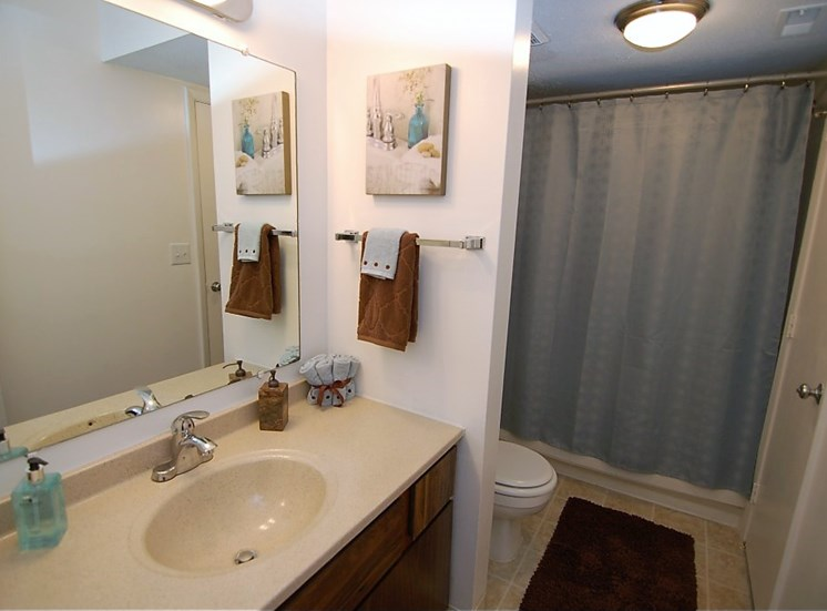 Deercross Apartment Bathroom