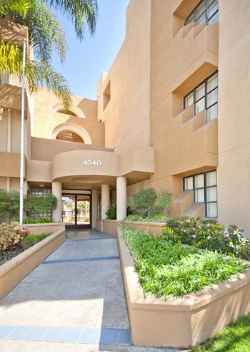 1240 E. San Antonio Drive 1-2 Beds Apartment for Rent Photo Gallery 1