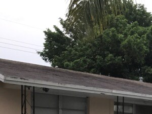5886 NW 15th Court 4 Beds House for Rent Photo Gallery 1
