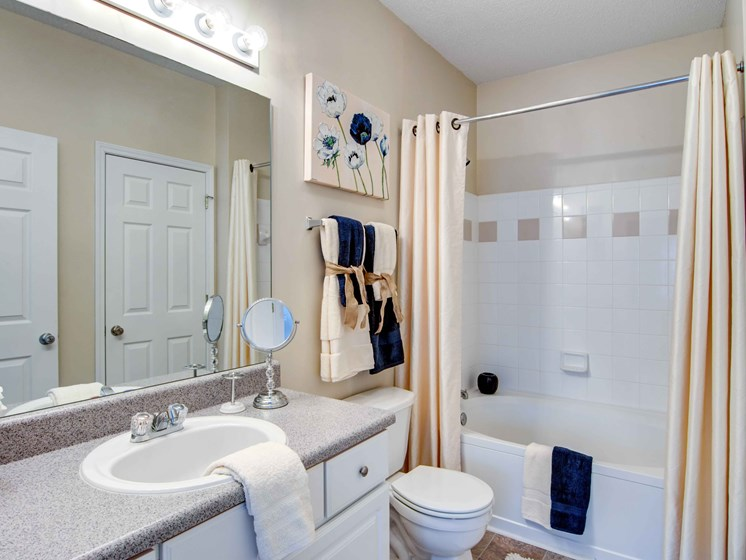 Large Mirrors in Bathroom