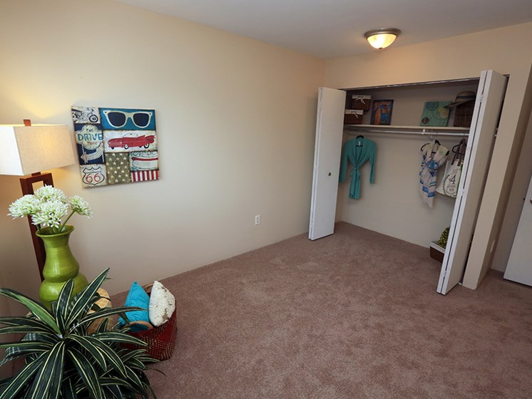 Lots Of Closet Space At The Bronco Club Townhomes In Kalamazoo, MI Near Western Michigan University