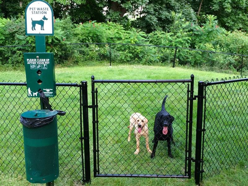 Off-leash dog park