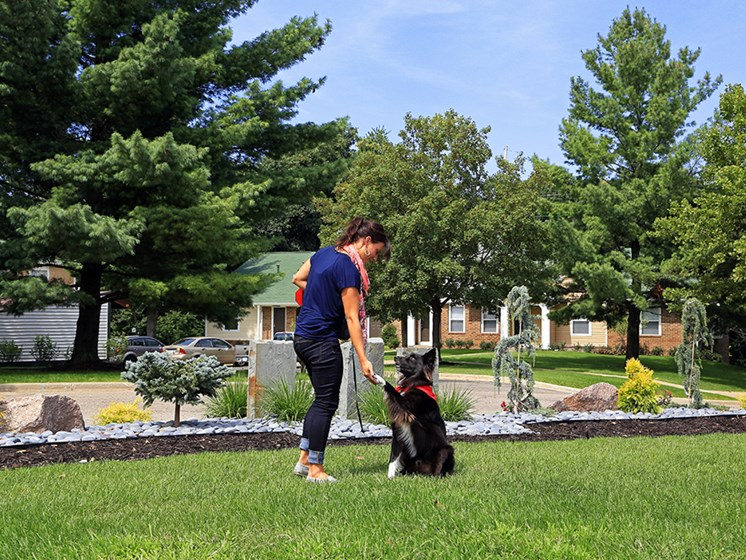 Pet friendly homes at The Bronco Club Apartments in Kalamazoo, MI near Western Michigan University