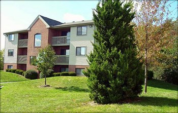 1111 Deerfield Road #105 2-3 Beds Apartment for Rent Photo Gallery 1