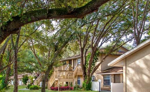 Grand Oaks Apartment Homes Riverview, FL 33578 Oak Trees