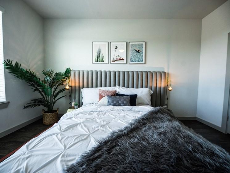 bedroom apartments in east austin