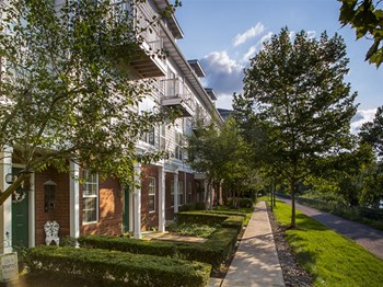 611 East Waterfront Drive 1-3 Beds Apartment for Rent Photo Gallery 1