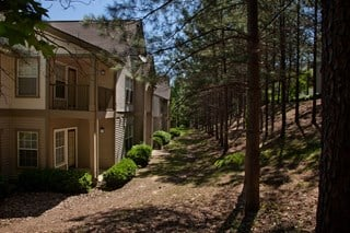 Scenic views with natural landscaping at 150 Summit, Birmingham, AL,35243