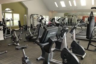 150 Summit, Birmingham, AL,35243 cardio and weight equipment in massive 24-hour fitness center