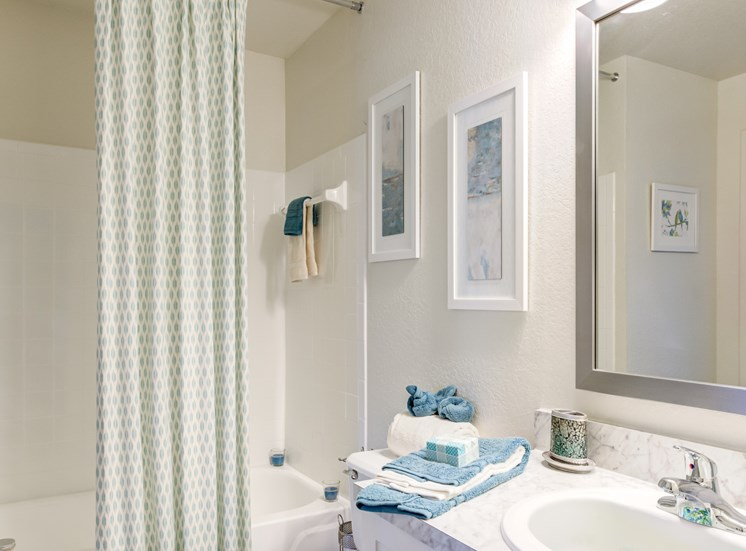 Luxurious Bathrooms at Pine Harbour, Orlando, Florida