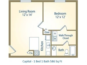 1x1 Capital 586 Sq Ft