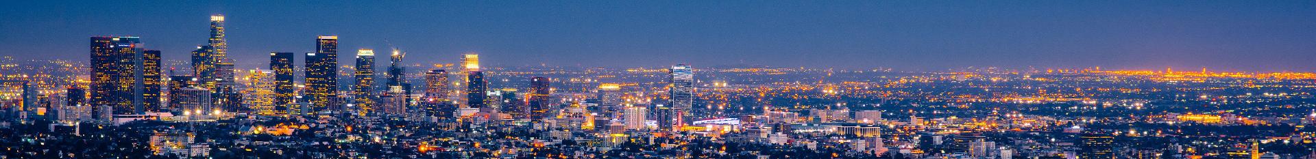 Los Angeles banner 1
