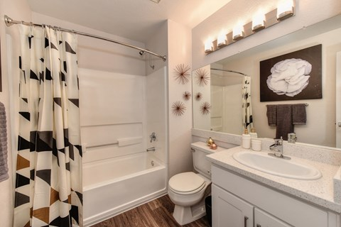 Bathroom with Wood Inspired Floors, Toilet, Patterned Shower Curtain and Vanity