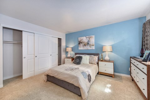 Bedroom with Closet, Carpet, Blue Wall, Brown/White Dresser, Lamp and Gray Curtains