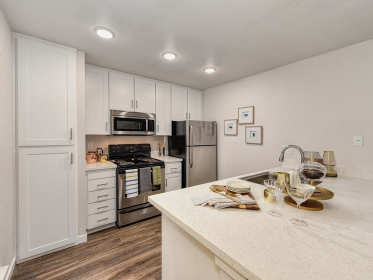 Luxury Apartment Community Kitchen with Stainless Steel Appliances and Modern Cabinetry