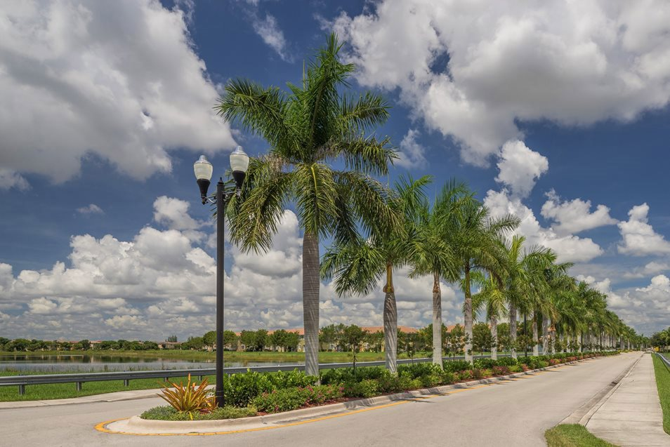 Luxury Road View, Palm Breeze at Keys Gate Homestead, FL 33035 near Kendall