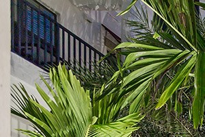 Entrance at Orchid Run Apartments in Naples, FL
