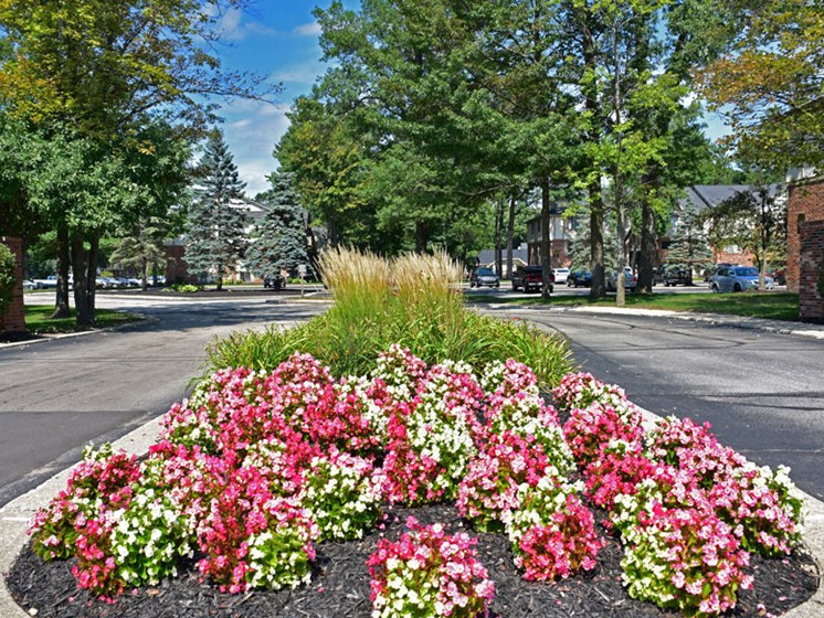 Entrance Garden at Woodland Place, Midland, 48640