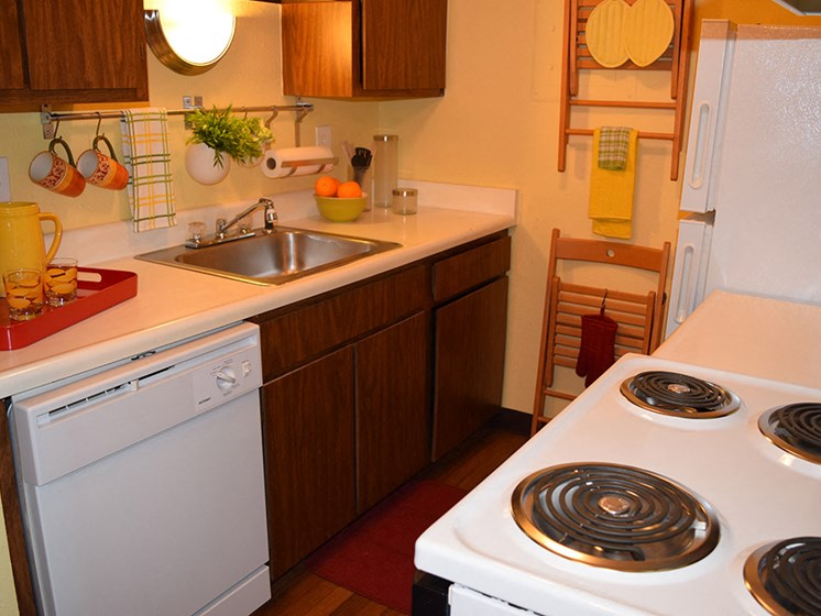 Efficient Appliances at Perry Place, Michigan, 48439