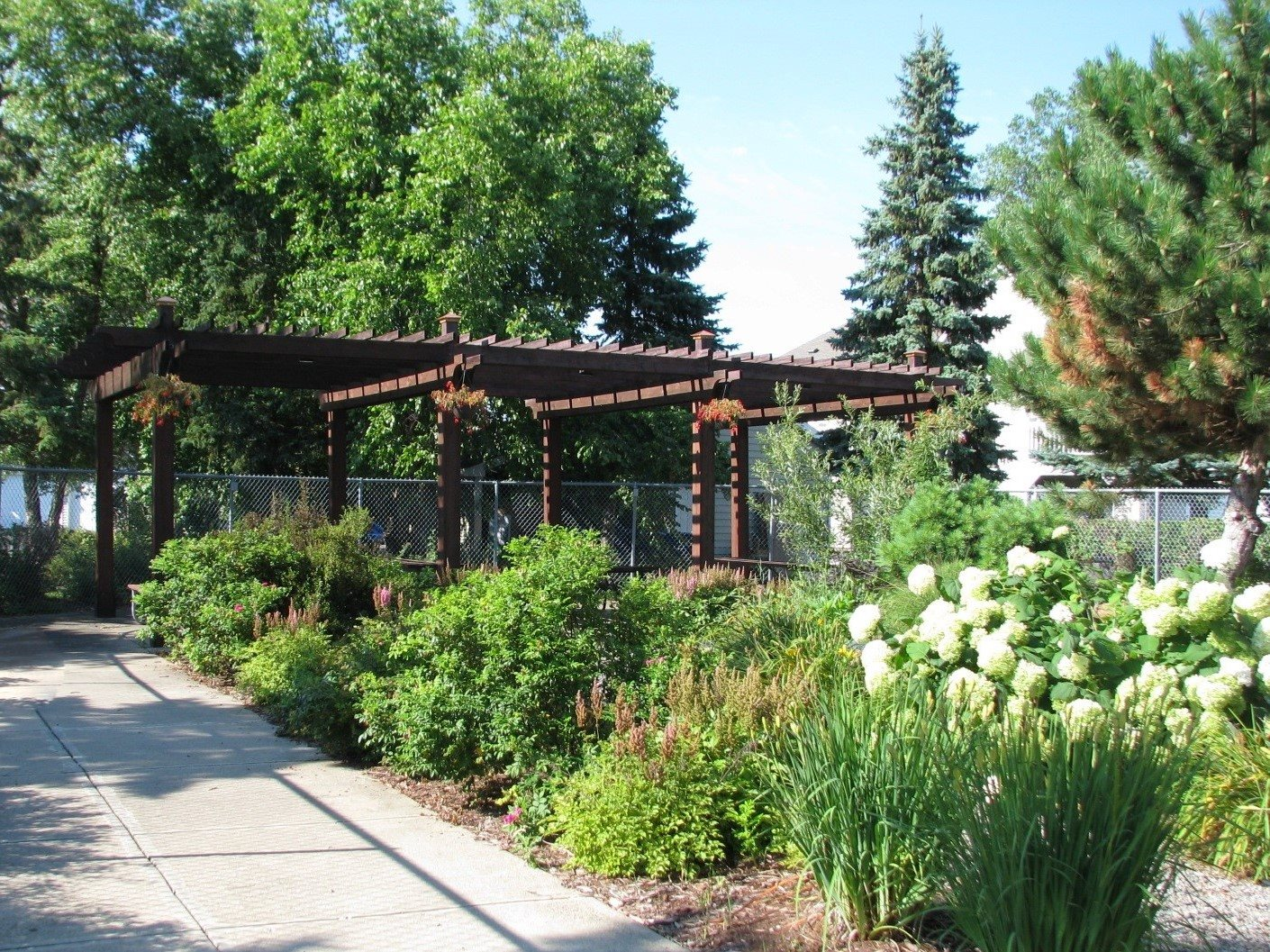 Tea Garden at Meadows of Coon Rapids in Coon Rapids, Minnesota