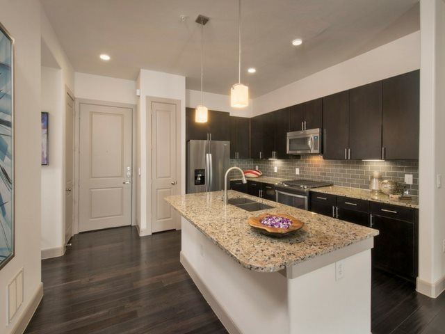 Gourmet Kitchens with Dishwasher and Disposal at Midtown Houston by Windsor, Houston, 77002