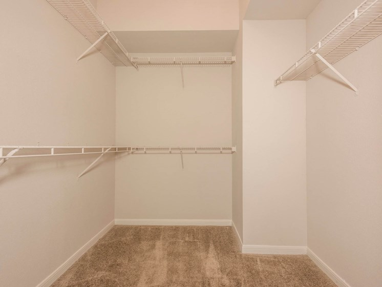 Spacious walk in closet