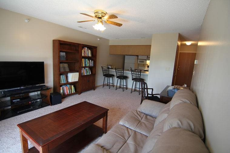 Interiors-Skyline View Apartments Living Area with Ceiling Fan in Lincoln NE