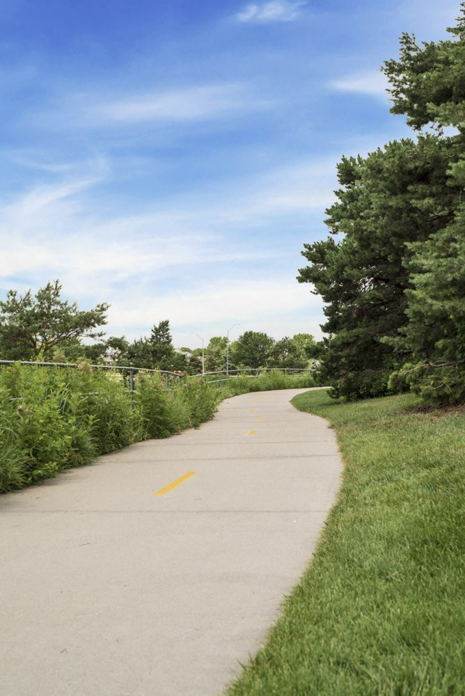 Trails at Pine Lake Heights