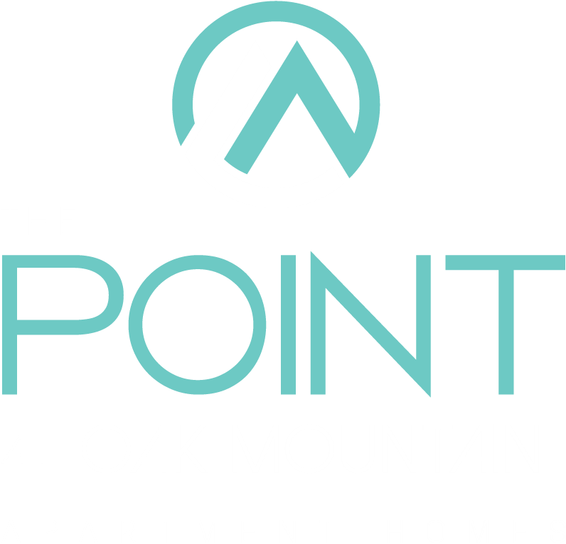 The Point At Oak Mountain Property Logo 3