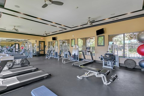 24 hour fitness center las colinas