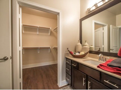 Amazing walk in closet and bathroom vanity