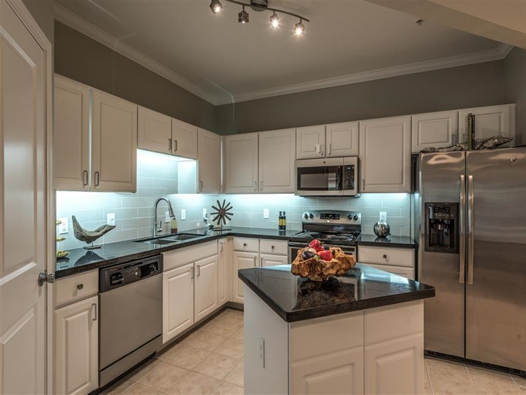 Stainless Steel Appliances at The Circle at Hermann Park in Houston, Texas