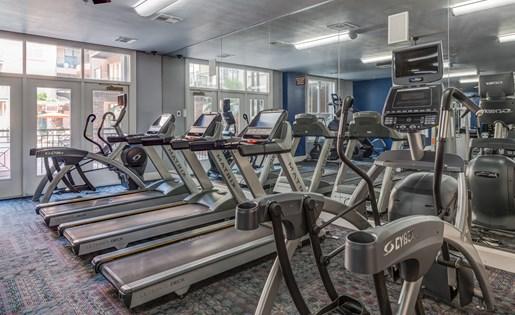 Fitness Center at La Maison River Oaks Apartments in Houston, Texas