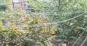 Brooklyn homepagegallery 3