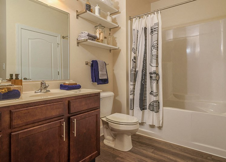 Wood-Plank Style Flooring in Baths at Abberly at Southpoint Apartment Homes by HHHunt, Fredericksburg, 22407