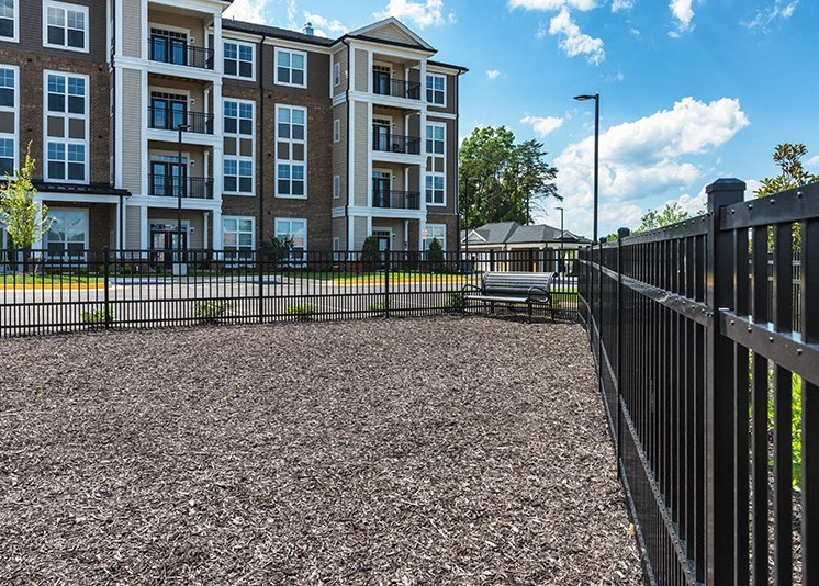 Dog Park for Your Four Legged Friends at Abberly at Southpoint Apartment Homes, Virginia, 22407
