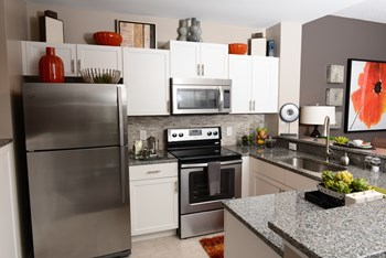 9896 Grand Verde Way 2-4 Beds Apartment for Rent Photo Gallery 1