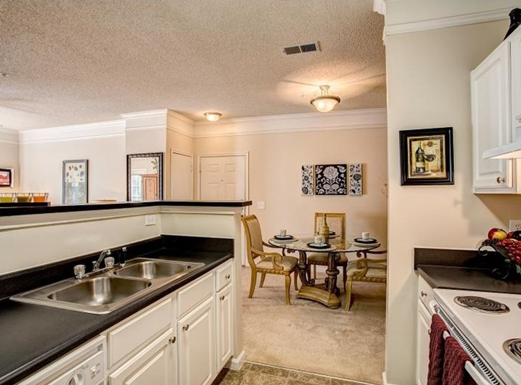 Fully Furnished Kitchens at Waterford Landing, 37076