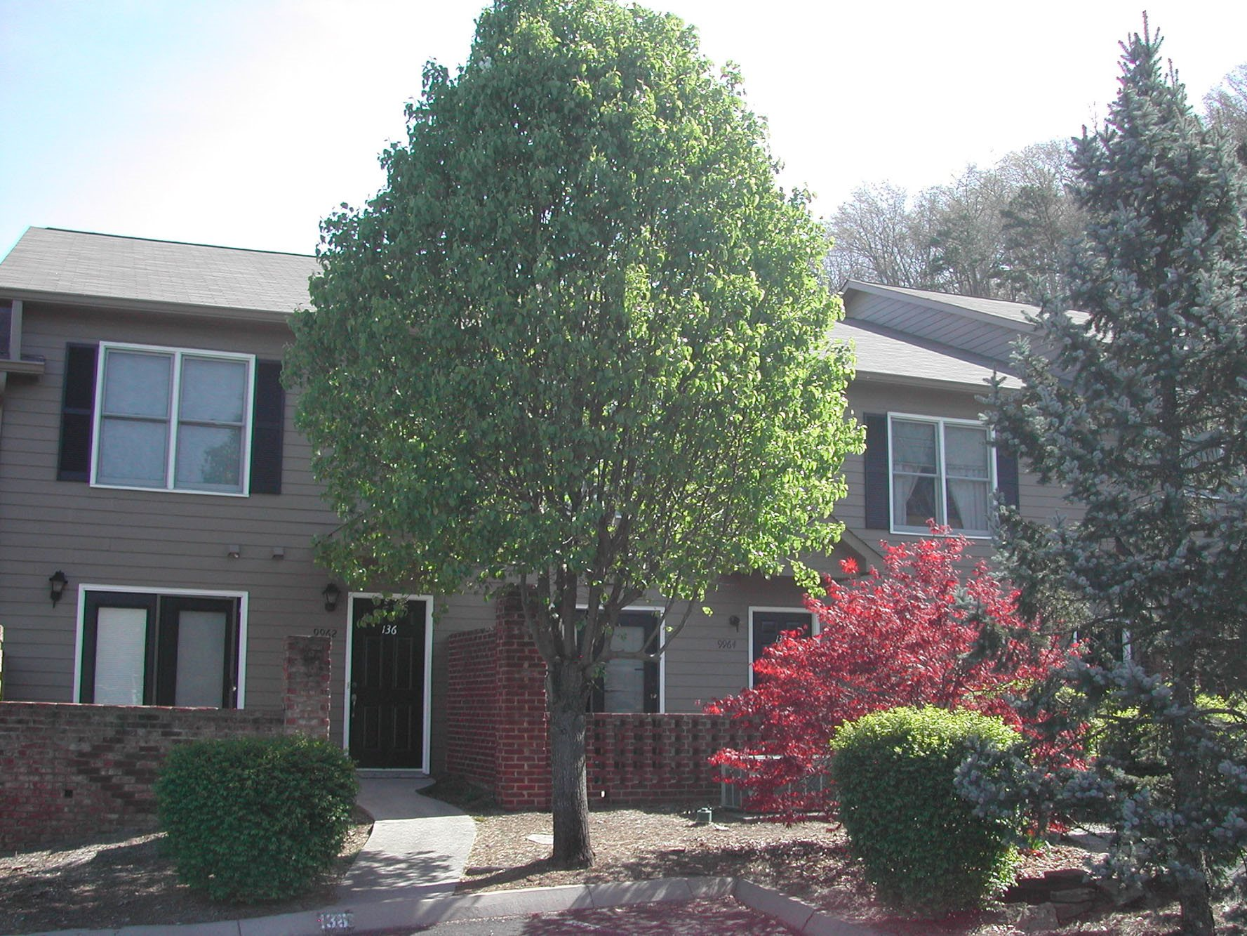 Renovated Apartment Homes Available at Forest Ridge, Knoxville, TN,37931