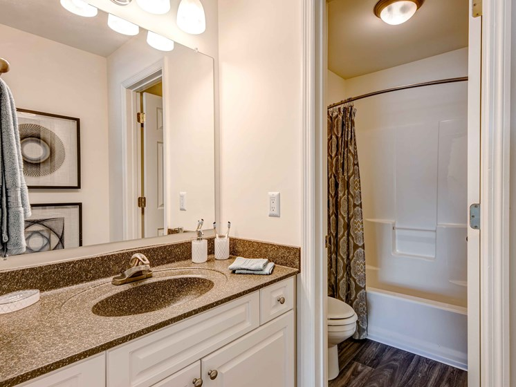 Lever-Style Door And Faucet Handles In Bathroom at Forest Ridge Apartments, Knoxville