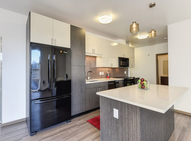 Luxury Apartment Community Kitchen with High End Appliances
