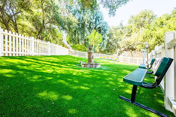 Westlake Village Apartments Dog Park