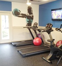 Cardio Equipment at Belvedere at Quail Run, Naples, FL,34105