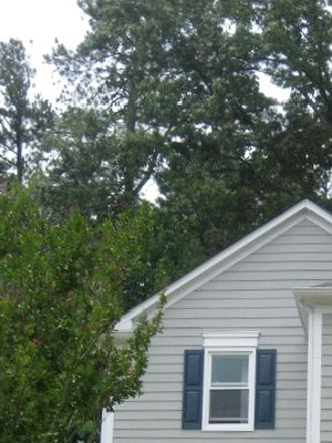 740 Brittany Court 3 Beds House for Rent Photo Gallery 1