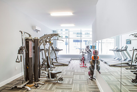 Gym and Fitness Center