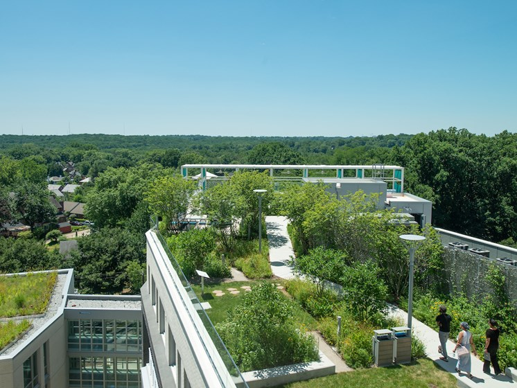 Build a Garden Path at The Pearl, Silver Spring, 20910